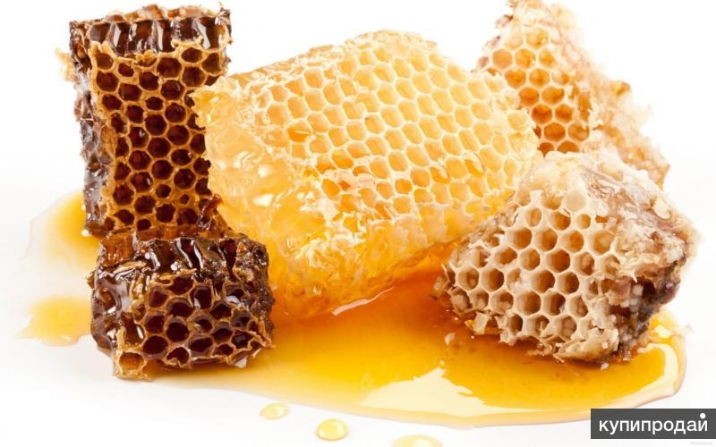 Продам мёд цветочный