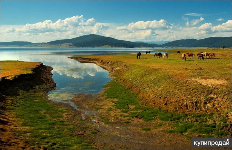 Продается земля под строительство в Болгарии яз. Батак 36221 м2 по 10 евро