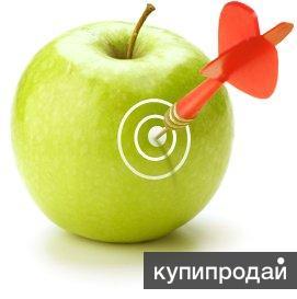 Настройка и ведение Яндекс.Директ и Google AdWords