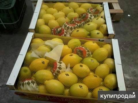 Свежие лимоны из Марокко