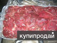 Говядина блочная из Беларуси оптом