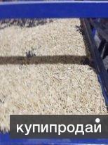 производство древеной гранулы пеллеты
