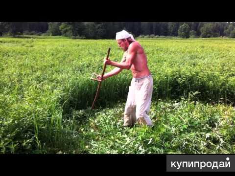 выполним покос травы