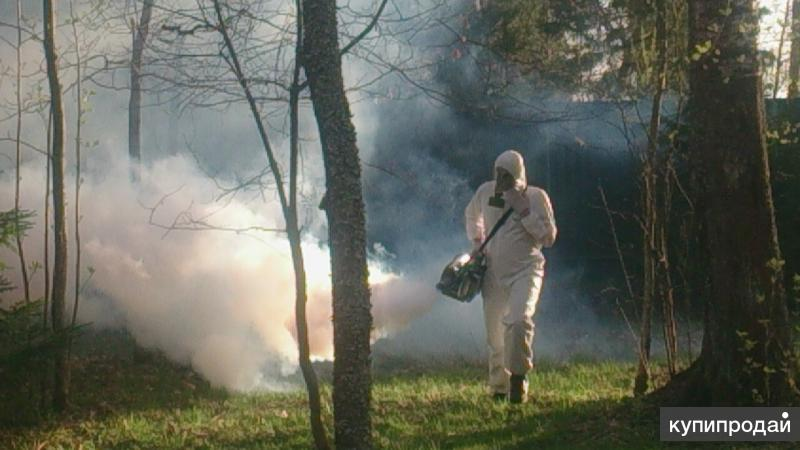 дезинфекция тараканов клопов комаров Дзержинск