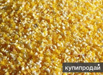 Продаём кукуруза дроблёная 1000т.