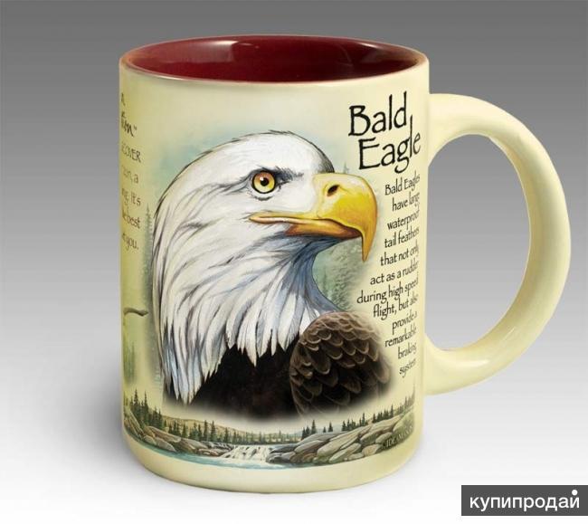Кружка керамическая Bald Eagle(American Expedition)