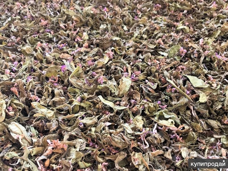 Иван-чай Ароматный, солнечной ферментации Продам — 200 руб. — Челябинская област