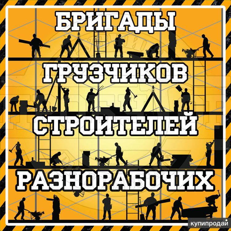 Бригады строителей и подсобных работников в Воронеже