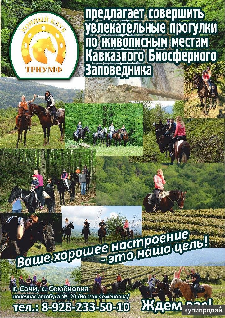 Конные прогулки Сочи. Экскурсии верхом на лошадях Сочи. Конный клуб Триумф Сочи
