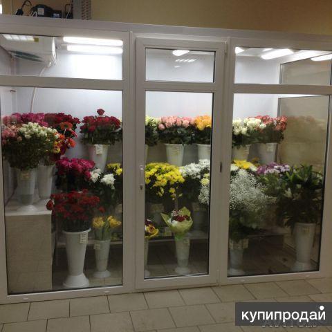 Холодильная камера-витрина