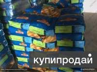 Гибриды семена кукурузы Monsanto ДКС 4014(ФАО340), ДКС 3511 (ФАО 330).