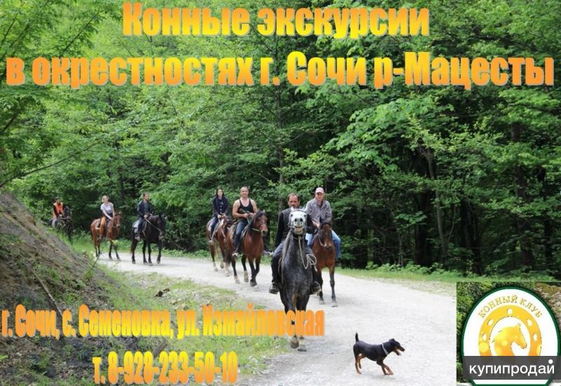 Экскурсии верхом на лошадях Сочи. Конный клуб Триумф Сочи