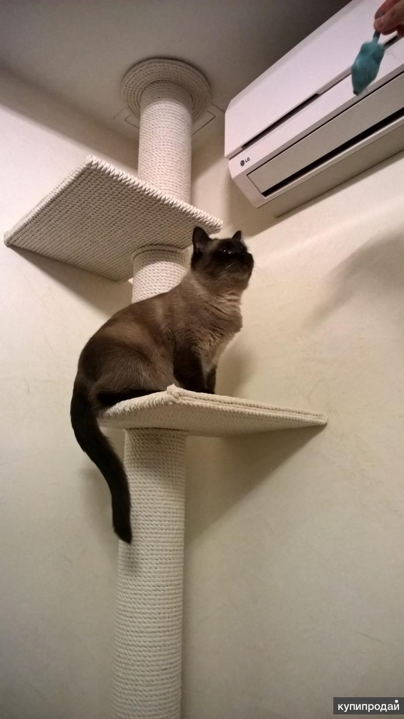 Когтеточка напольная для кошек своими руками