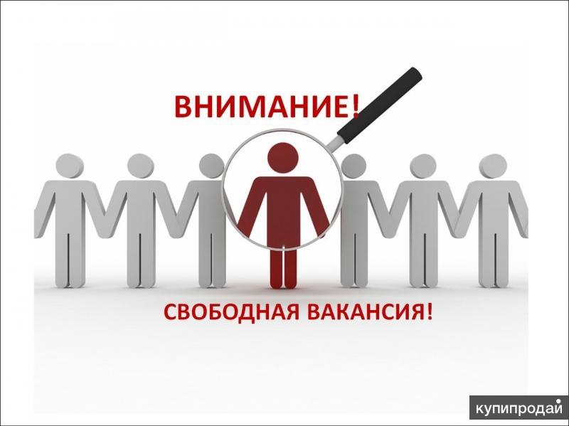 ФИНАНСОВЫЙ КОНСУЛЬТАНТ ФЕДЕРАЛЬНОЙ СЕТИ