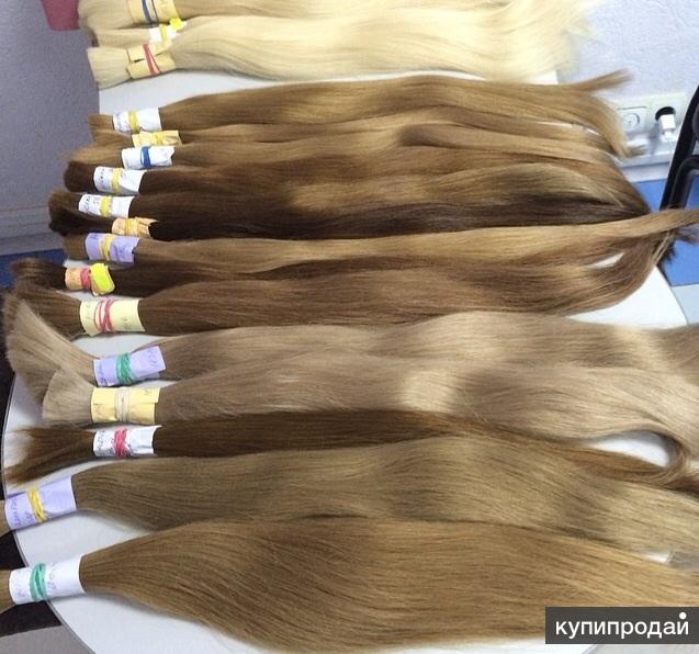 Натуральные волос для наращивания , оптом и розница , славянский тип, русские во