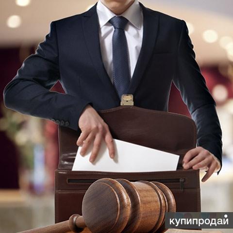 Квалифицированная юридическая помощь.