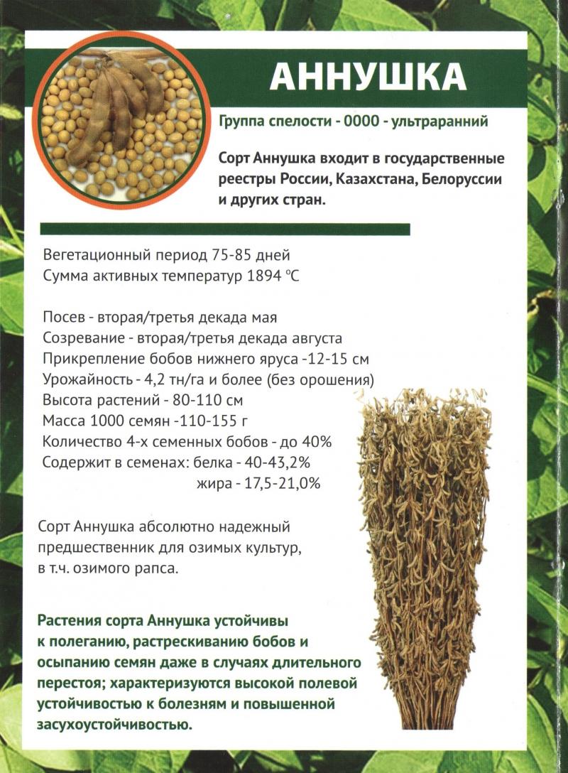 Семена сои от производителя.