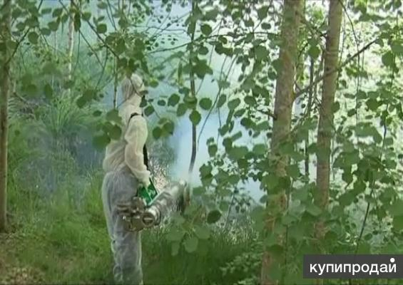 Дезинфекция обработка от короеда рыжих тараканов кротов и лесные клещи Чехов