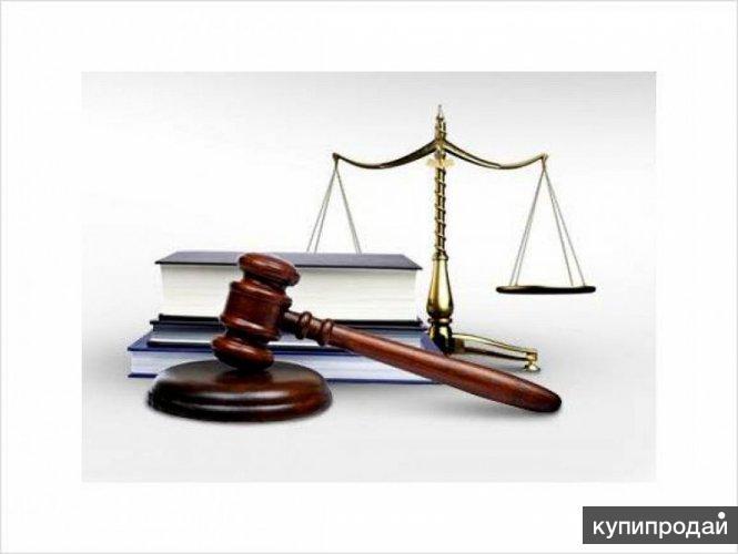 Опытный юрист. Представительство в суде