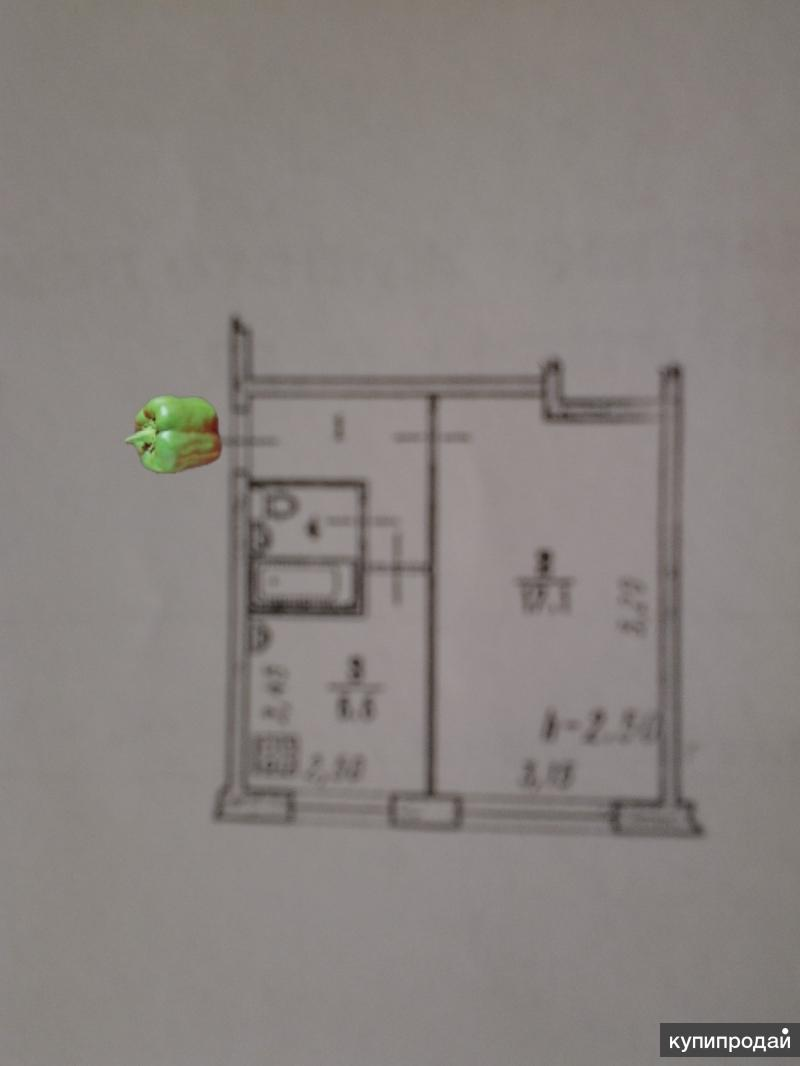 1-к квартира, 31 м2, 1/5 эт.