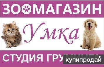 Стрижка собак и кошек в Сысерти