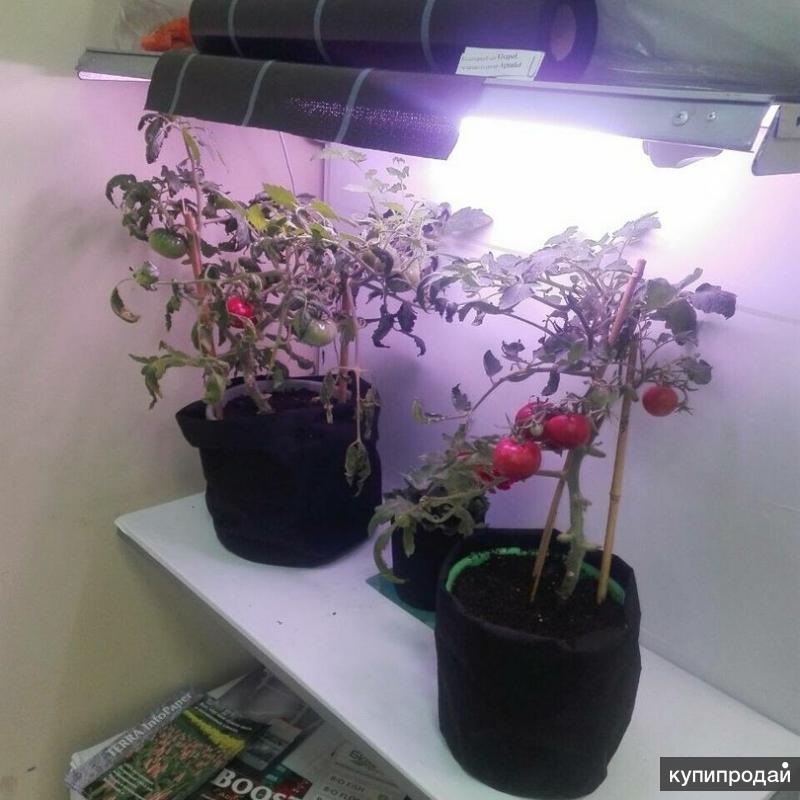 Светильник для растений и аквариума