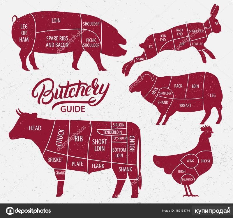 куплю мясо: говядина,свинина,телятина,боранина