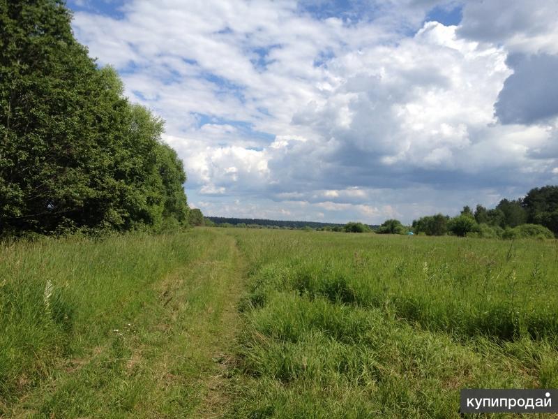 Продажа земли на первой линии от реки Волга в Конаковском районе Тверской обл.