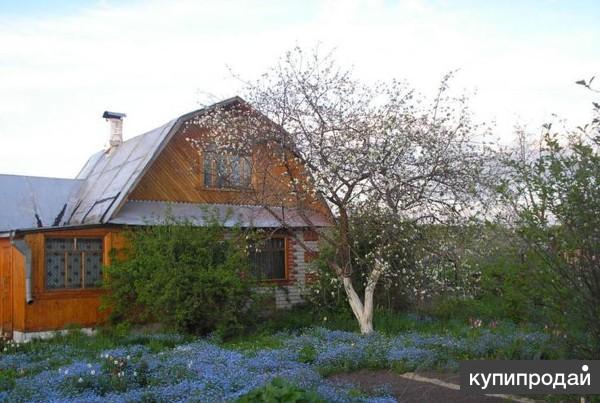 Купить сад в йошкар оле на авито недорого