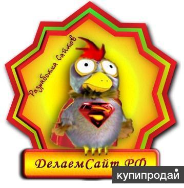 Создание, разработка продвижение сайтов по поисковым системам ДелаемСайт.РФ