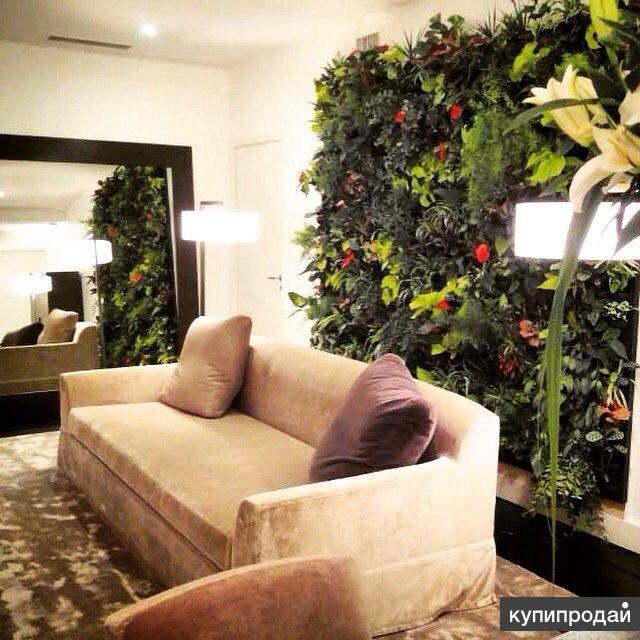 Вертикальное озеленение, Зимние сады, Фитодизайн