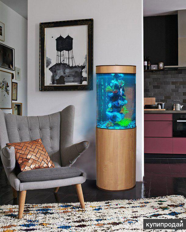 Оригинальный комплексный аквариум