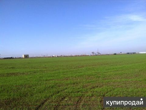 Краснодар. Ростовское шоссе 6 соток