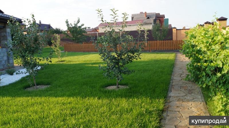 Посадка сада в Белгороде на вашем участке.