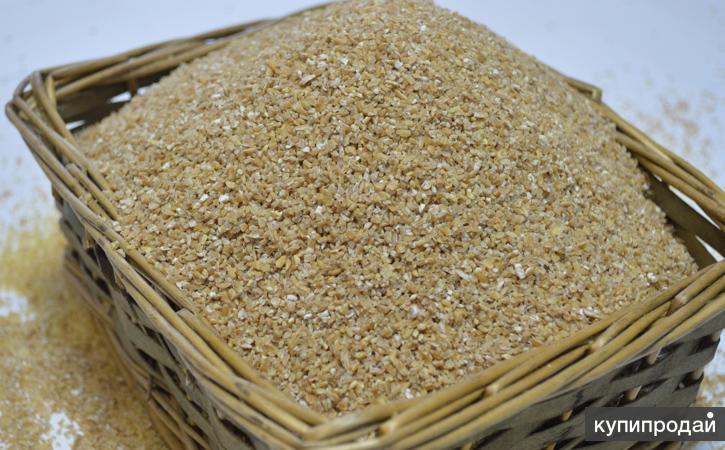 Продаю пшеничную крупу оптом