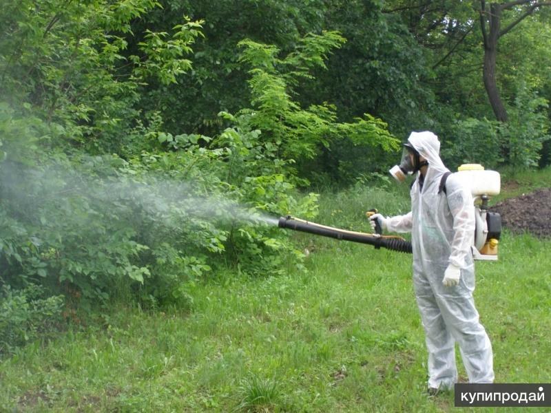 Защита дачи от лесных клещей комаров Клин