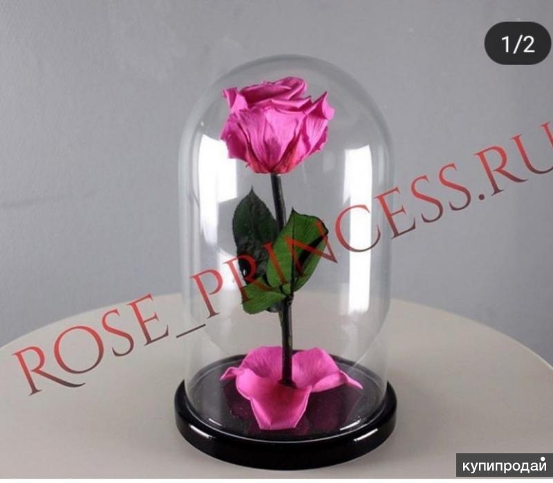 Роза В колбе оптом И врозницу