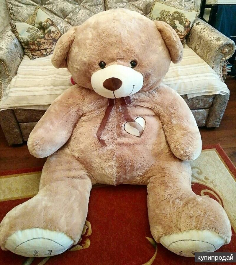 самый большой плюшевый медведь в мире фото заводчики считают, что