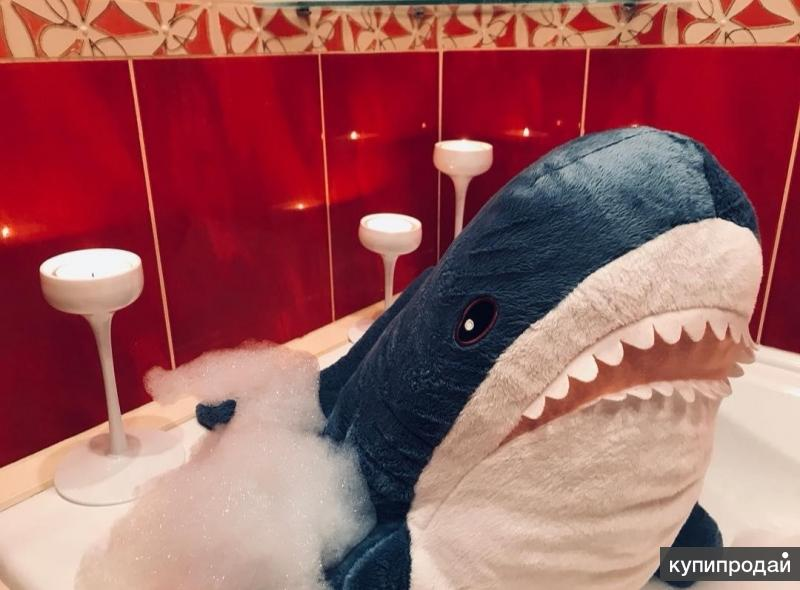 Акула Блохэй из Икеи
