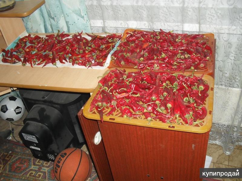 Продам красный молотый перец (кайенский )