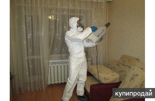 Обработка от тараканов сухой туман Орехово-Зуево