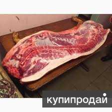 Продам домашнюю свинину