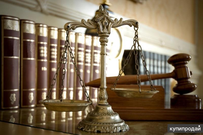 Юрист / Адвокат по трудовому законодательству. Консультации. Защита в суде
