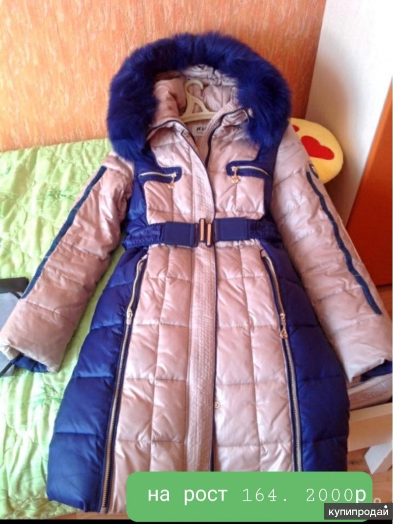 Пальто зимнее .2000 р.
