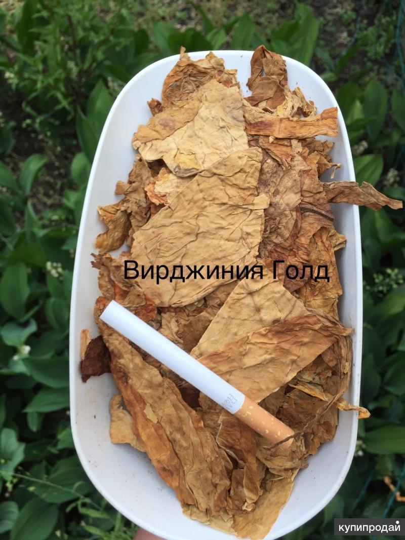 Купить табак на развес для сигарет в ростове на дону цены электронные сигареты одноразовые wlab ring