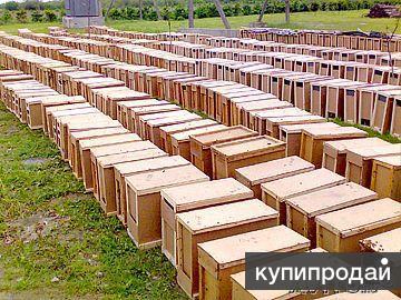 Пчелопакеты из Мукачево 2015
