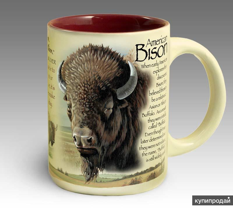 Кружка керамическая American Bison (American Expedition)