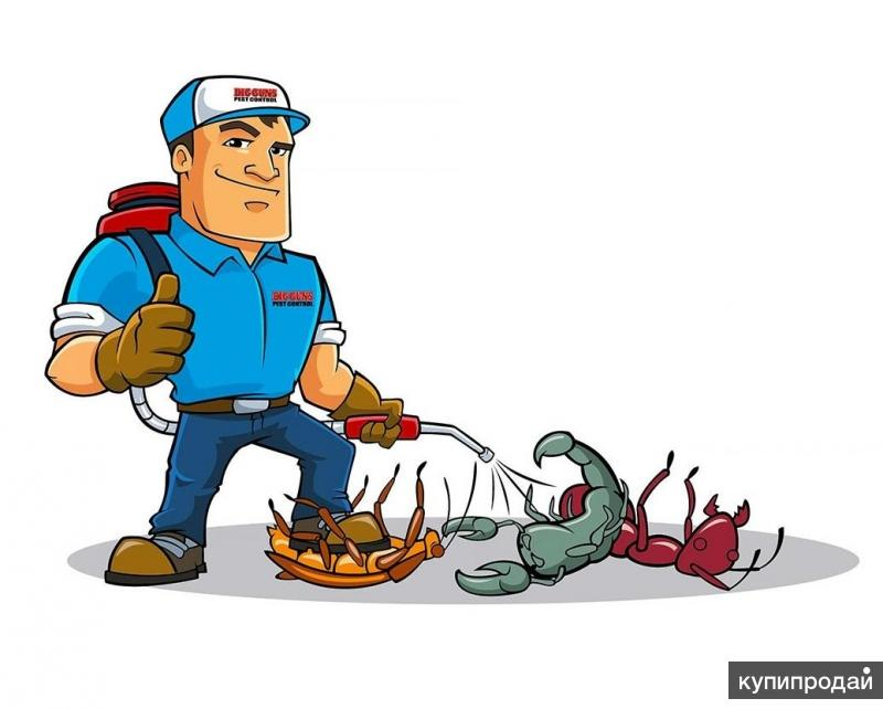 Уничтожение клопов, тараканов, муравьев, блох