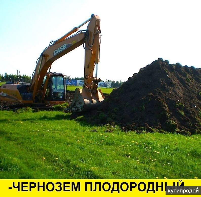 Чернозем Луговой