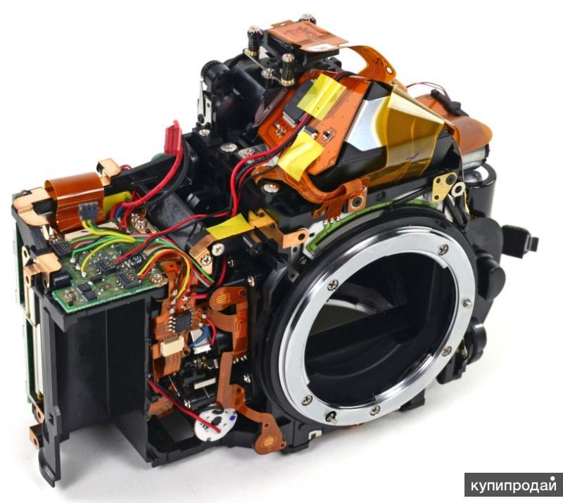 хозяйка круглосуточный ремонт фотоаппаратов помощью мамы первые